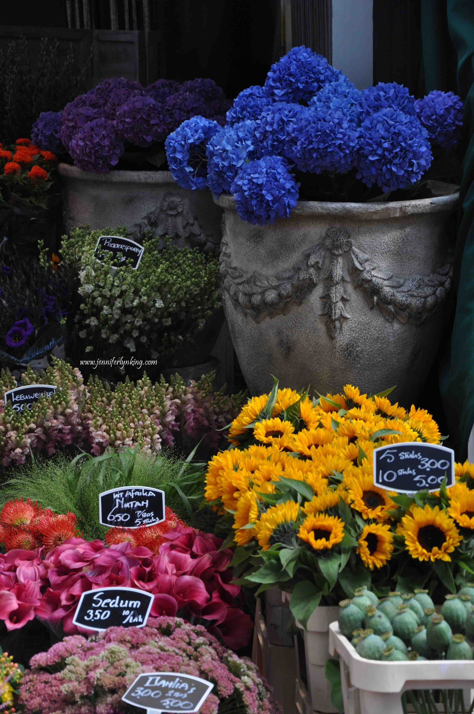 The Flower Markets, Amsterdam