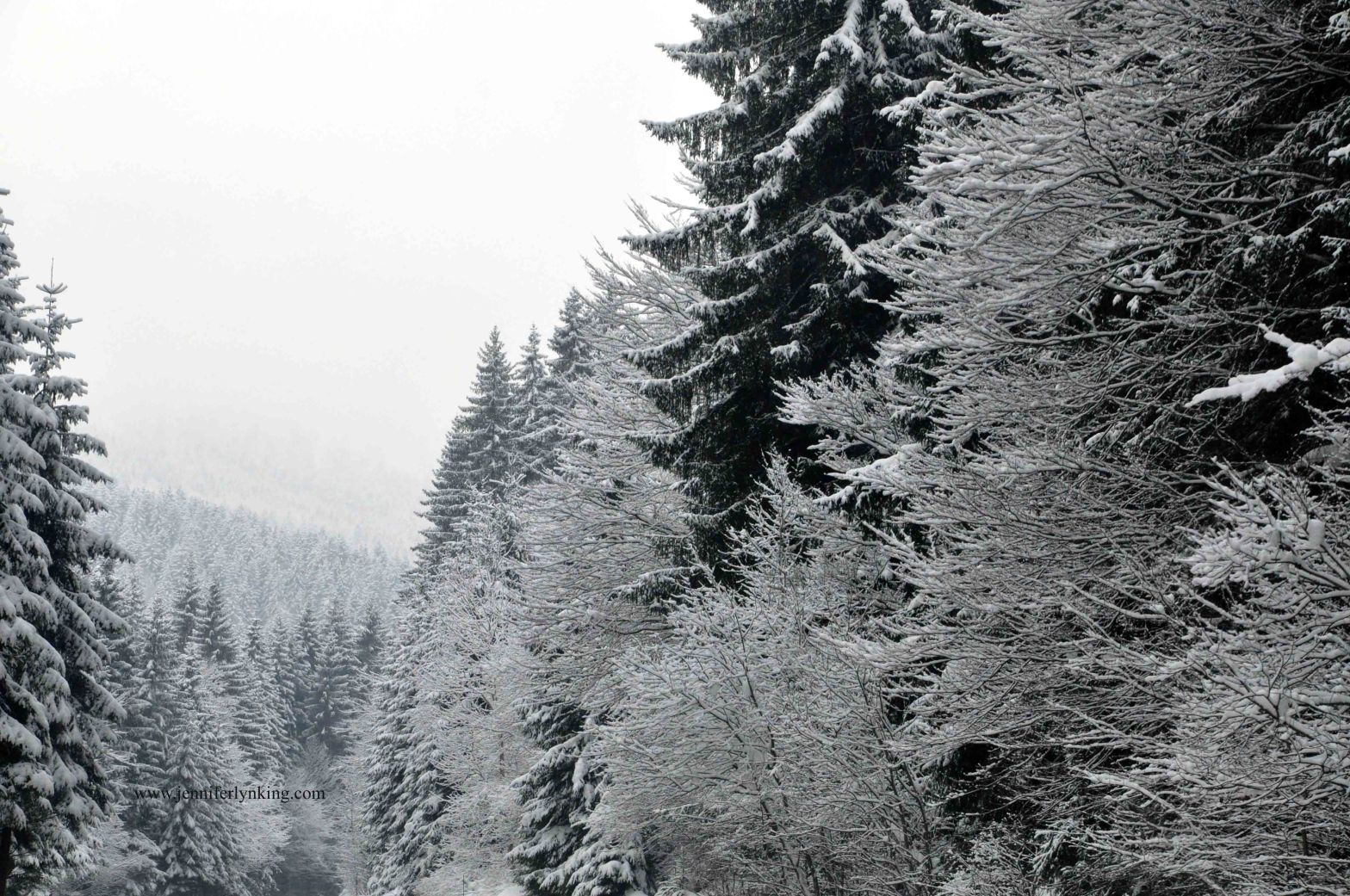 Austrian Alps at Christmas