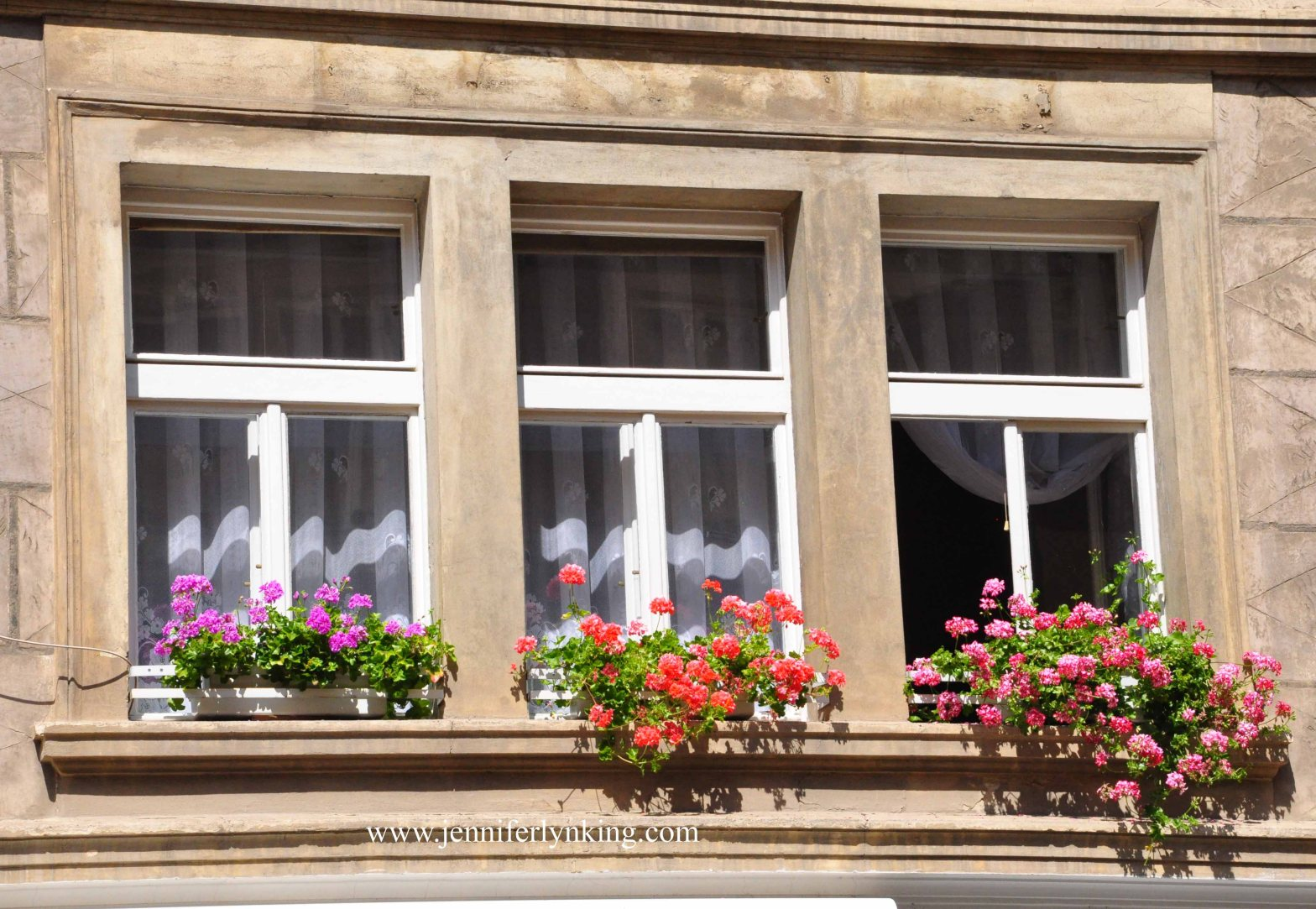 Window Boxes in Prague