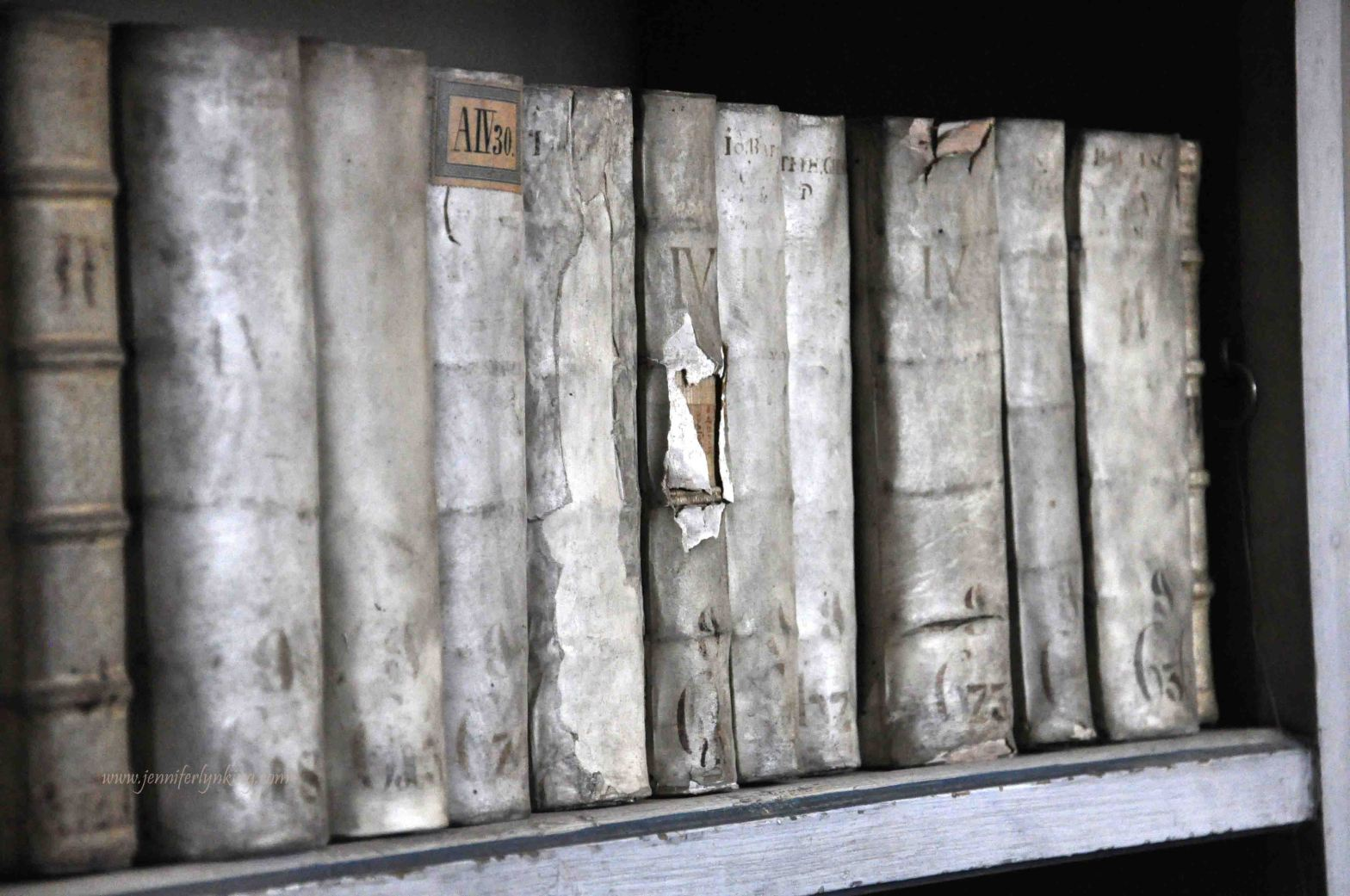 Old Books, Prague's Strahov Libraries