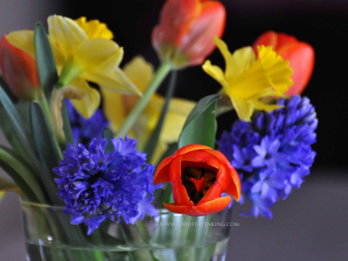 Thankfulness, Flowers, and Grace