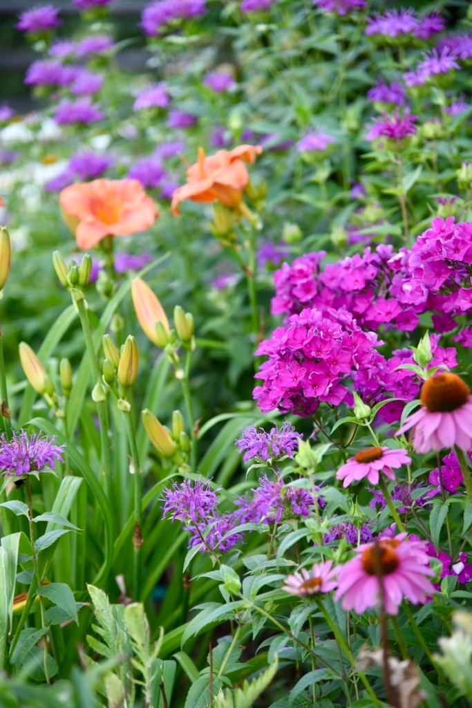 July gardens planting guide