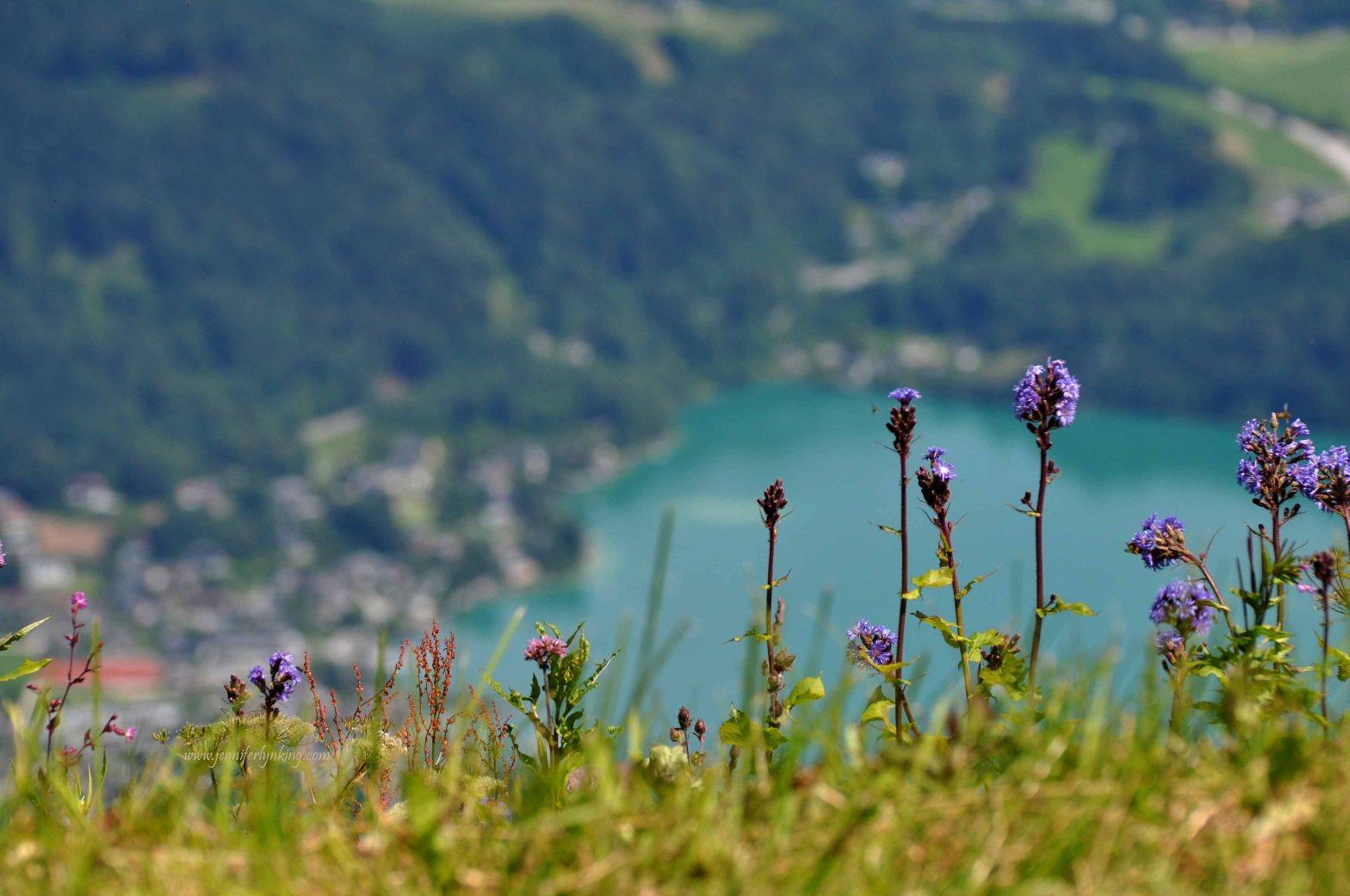 Paradise Found: St. Gilgen, Austria and the Zwolferhorn