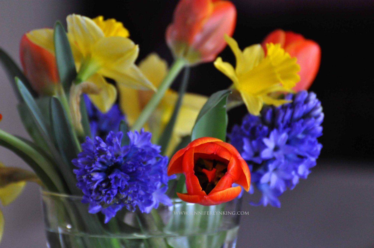 Daffodils, Hyacinths, and Tulips