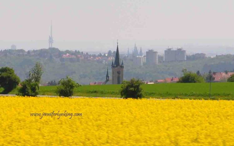 View over Prague, past a field of colza