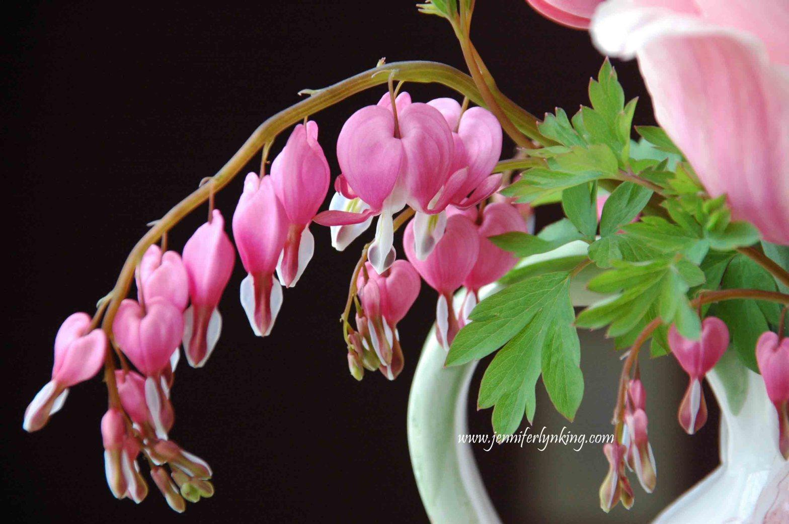 Bleeding Hearts bouquet