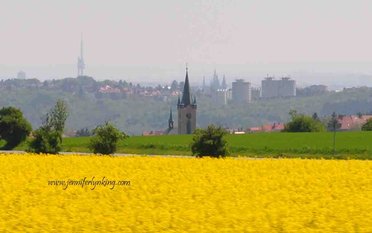Golden Fields of Colza and the View over Prague and the Prague Castle