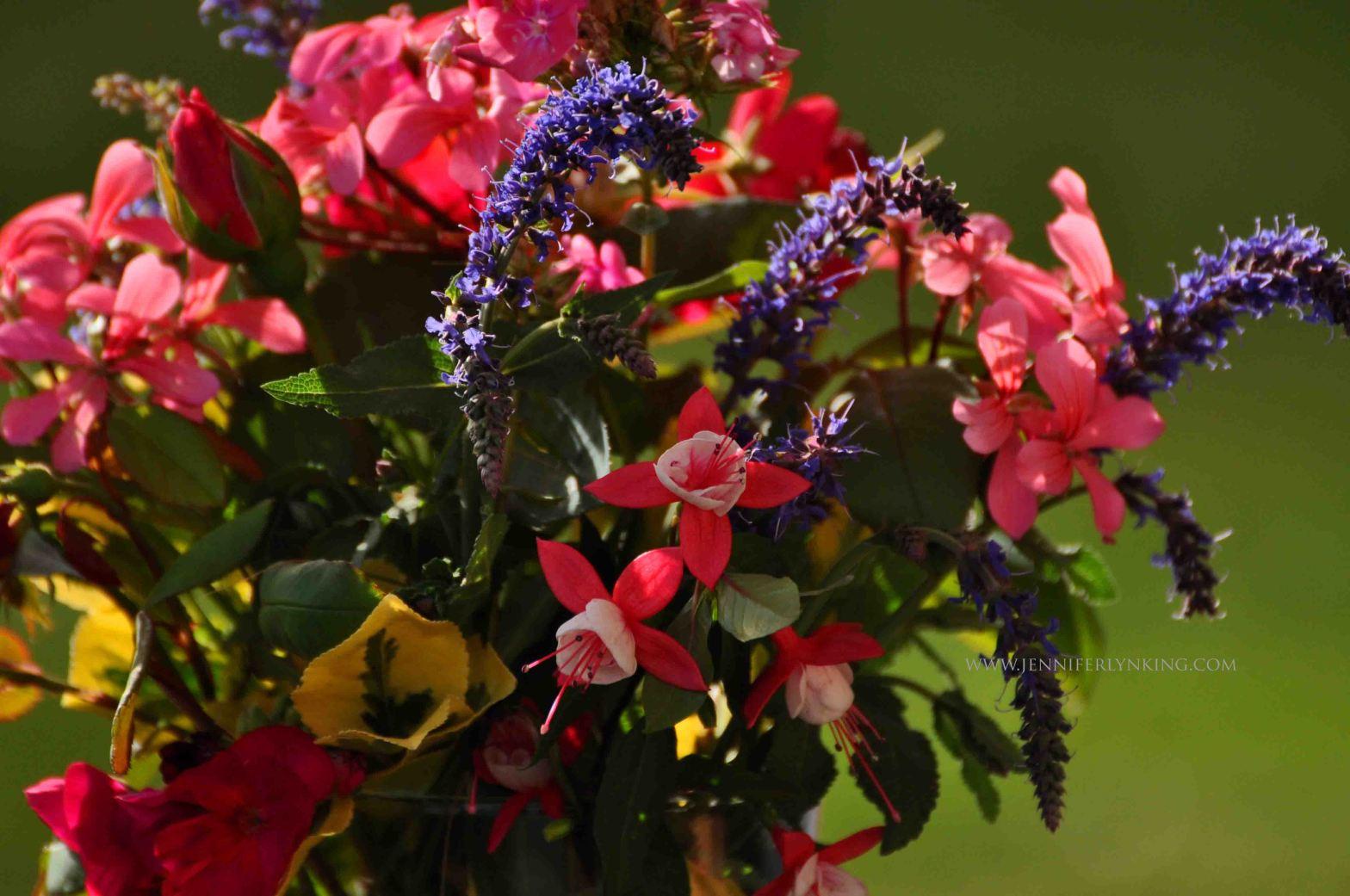Flowers of Encouragement