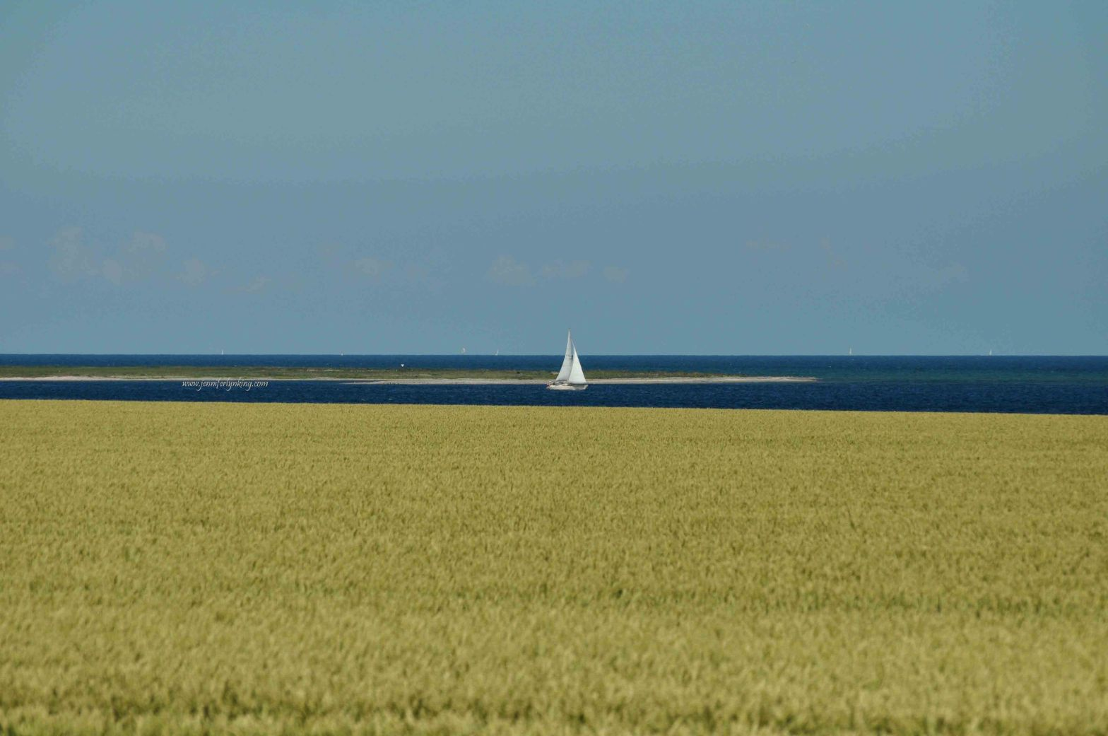 Sweden, Fields and Sea